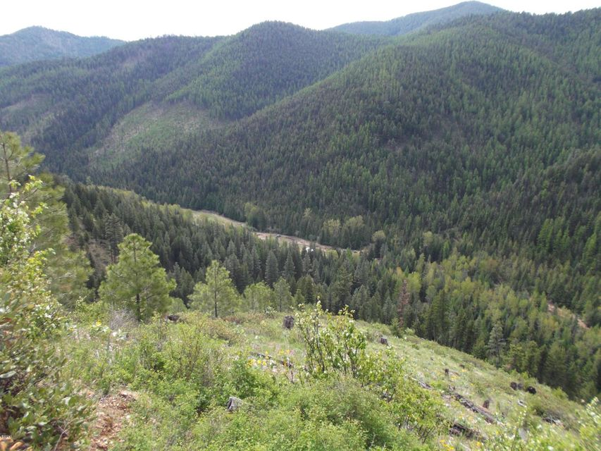 Additional photo for property listing at 4245 Quartz Creek Road  Superior, Montana 59872 United States