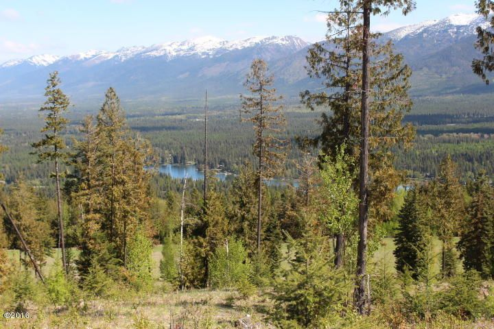 Land for Sale at Bug Creek Road Bigfork, Montana 59911 United States