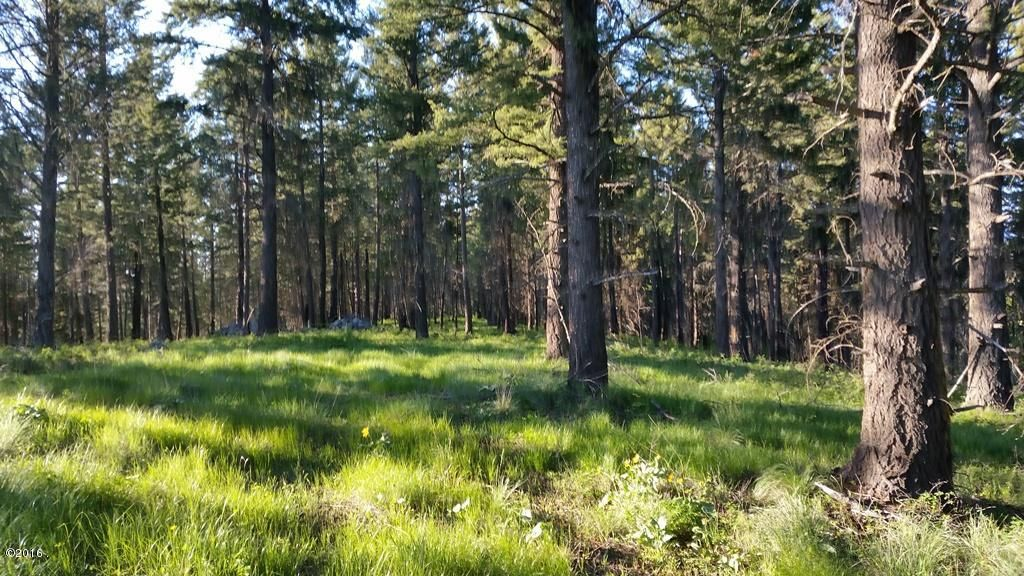 Additional photo for property listing at 86 Doubletree Drive  Bigfork, Montana 59911 United States