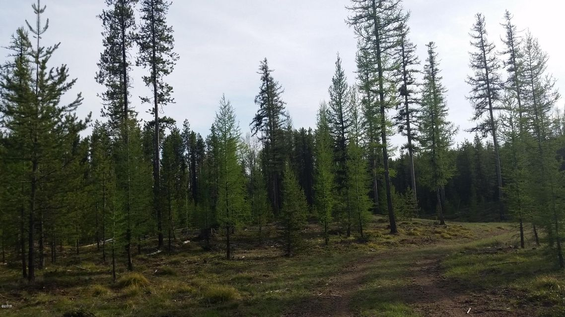Additional photo for property listing at Kraft Creek Road Kraft Creek Road Condon, Montana 59826 United States