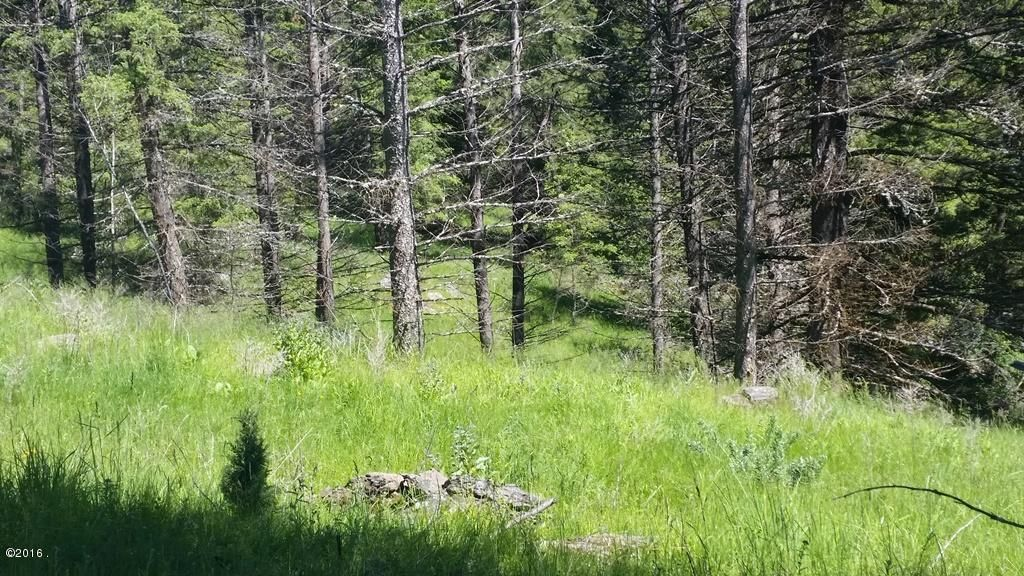 Additional photo for property listing at Hogue Drive  Bigfork, Montana 59911 United States