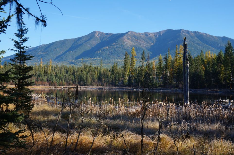 Land for Sale at Sinclair Creek Cedars Eureka, Montana 59917 United States