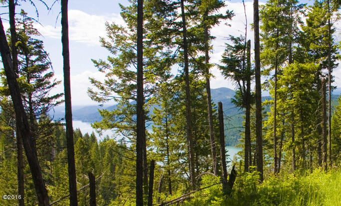 Additional photo for property listing at East Lakeshore Drive East Lakeshore Drive Whitefish, Montana 59937 United States