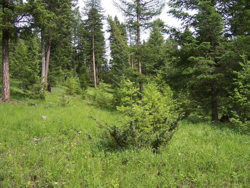 Additional photo for property listing at Hwy 93  Whitefish, Montana 59937 United States