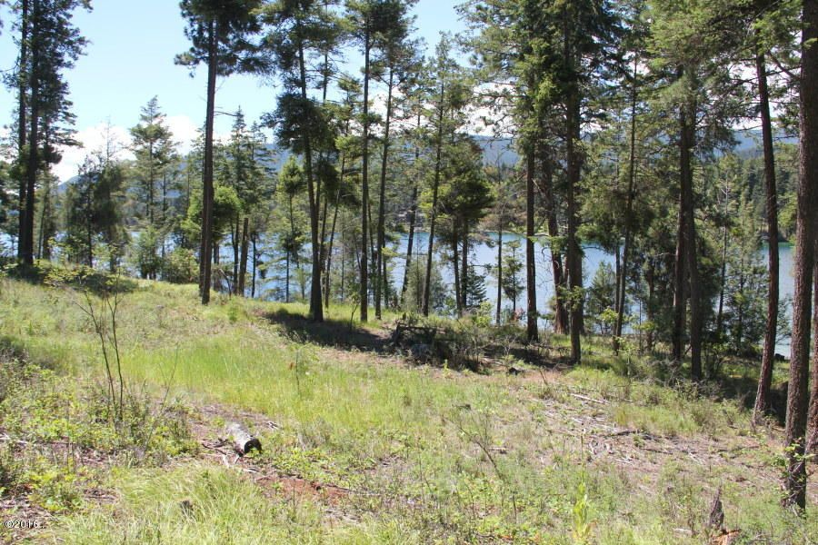 Additional photo for property listing at Osprey Loop  Rollins, Montana 59931 United States