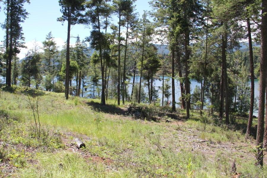 Additional photo for property listing at Nhn  Osprey Loop Nhn  Osprey Loop Rollins, Montana,59931 Hoa Kỳ