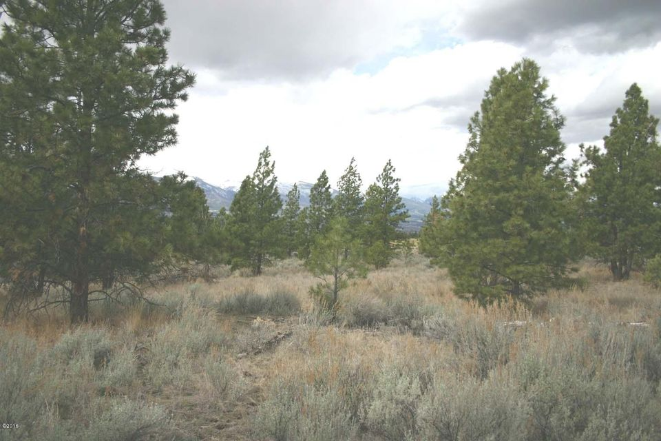 Land for Sale at 615 Fanny Witherspoon Trail Hamilton, Montana 59840 United States
