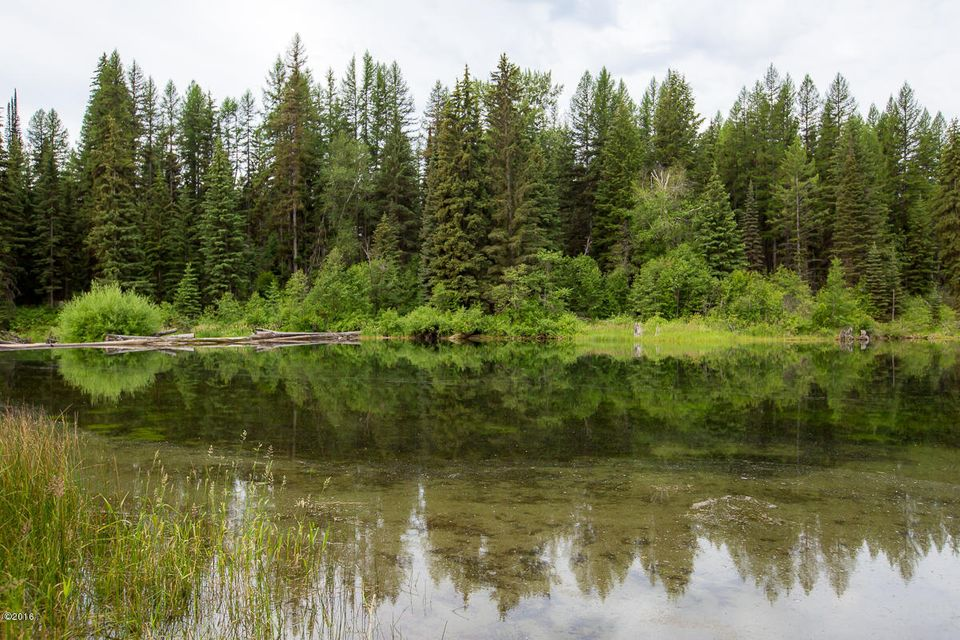 Additional photo for property listing at Hwy 93 Hwy 93 Olney, Montana 59927 United States