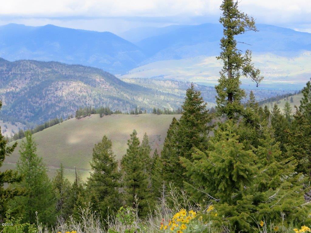 Land for Sale at 30063sb247 Deep Creek Missoula, Montana 59808 United States