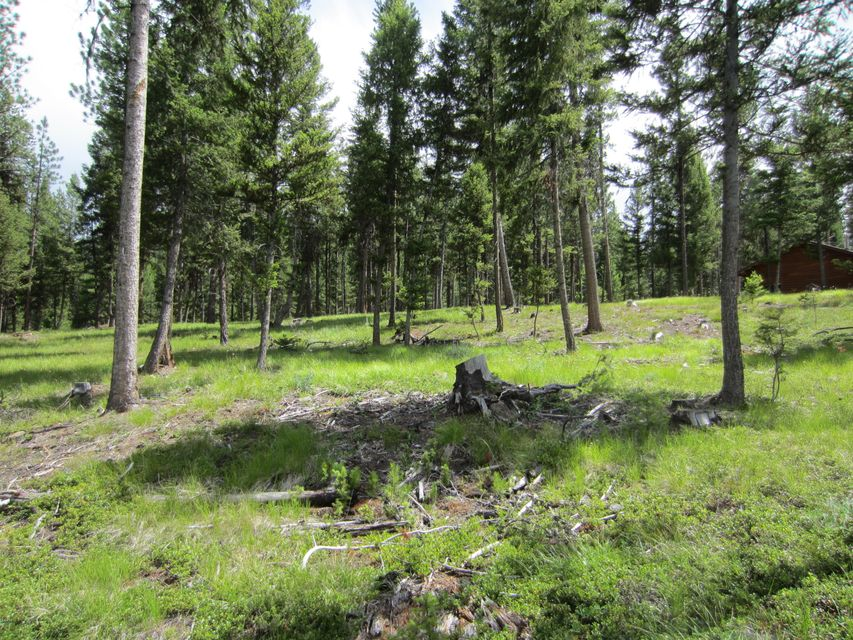 Additional photo for property listing at 9188 Lookout Mtn Road  Darby, Montana 59829 United States