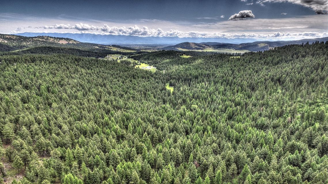 Land for Sale at Red Fox Run Kalispell, Montana 59901 United States
