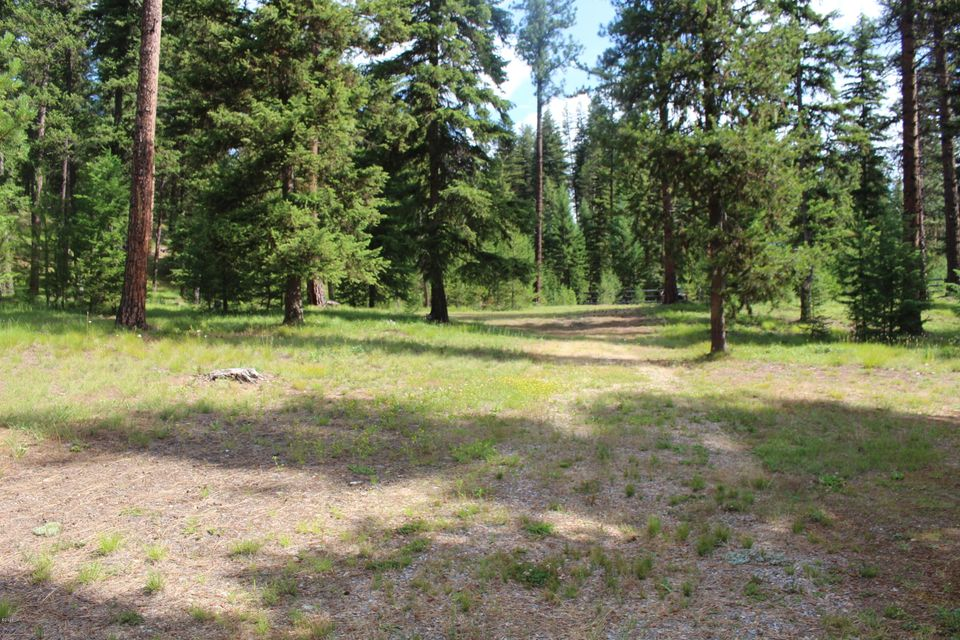 Additional photo for property listing at 11650 Mullan Gulch Road 11650 Mullan Gulch Road St. Regis, Montana 59866 United States