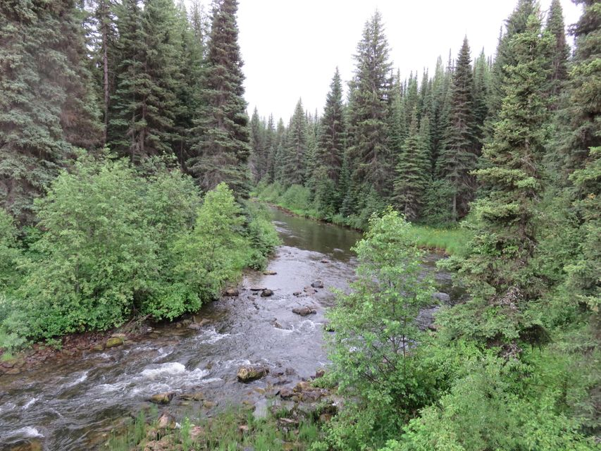 Land for Sale at Star Meadows Road Whitefish, Montana 59937 United States