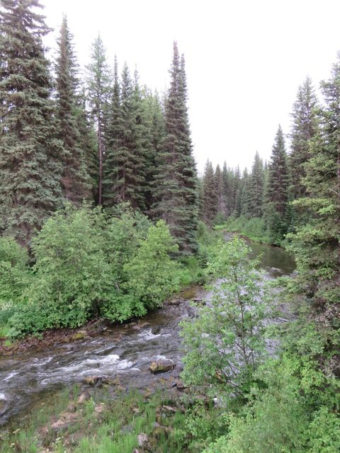 Additional photo for property listing at Star Meadows Road  Whitefish, Montana 59937 United States