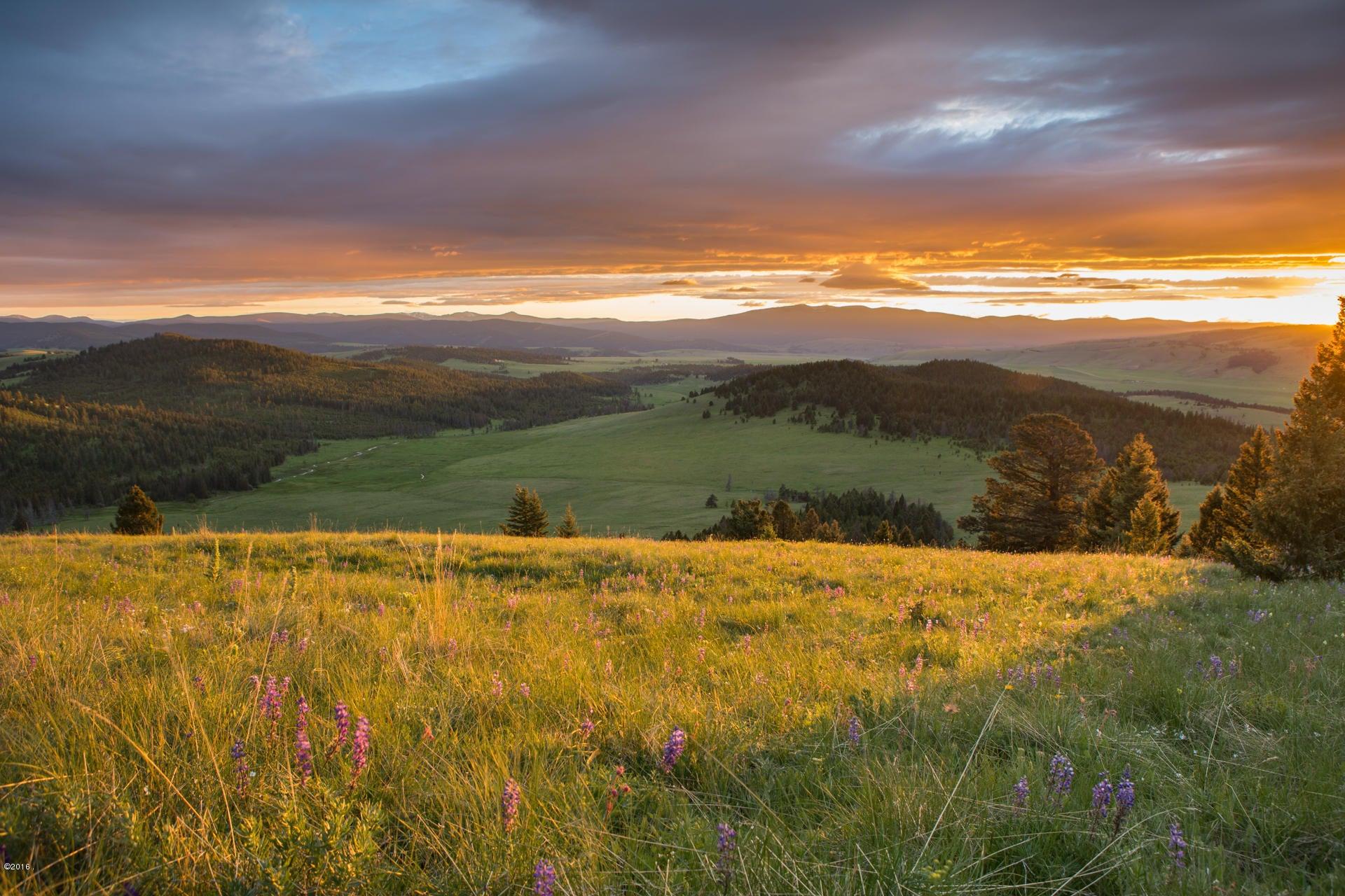 001 Warren Peak Ranch