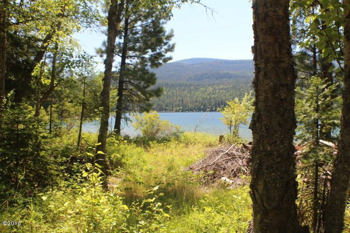 Additional photo for property listing at Mt Highway 83 Mt Highway 83 Bigfork, Montana 59911 United States