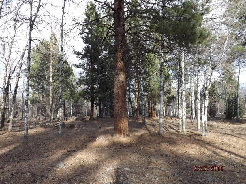 Additional photo for property listing at 475 Syringa Lane  Victor, Montana 59875 United States