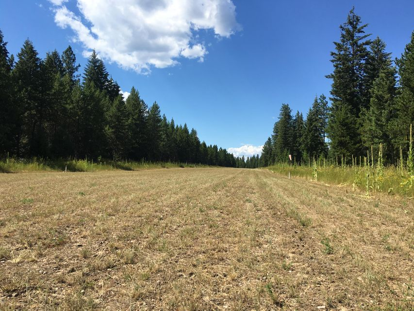 12 Little Bear Lane, Trout Creek, MT 59874