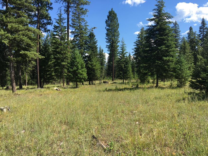 Additional photo for property listing at 12 Little Bear Lane  Trout Creek, Montana 59874 United States