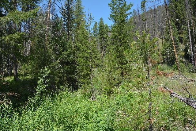 Additional photo for property listing at 2175 Hughes Creek Road  Darby, Montana 59829 United States
