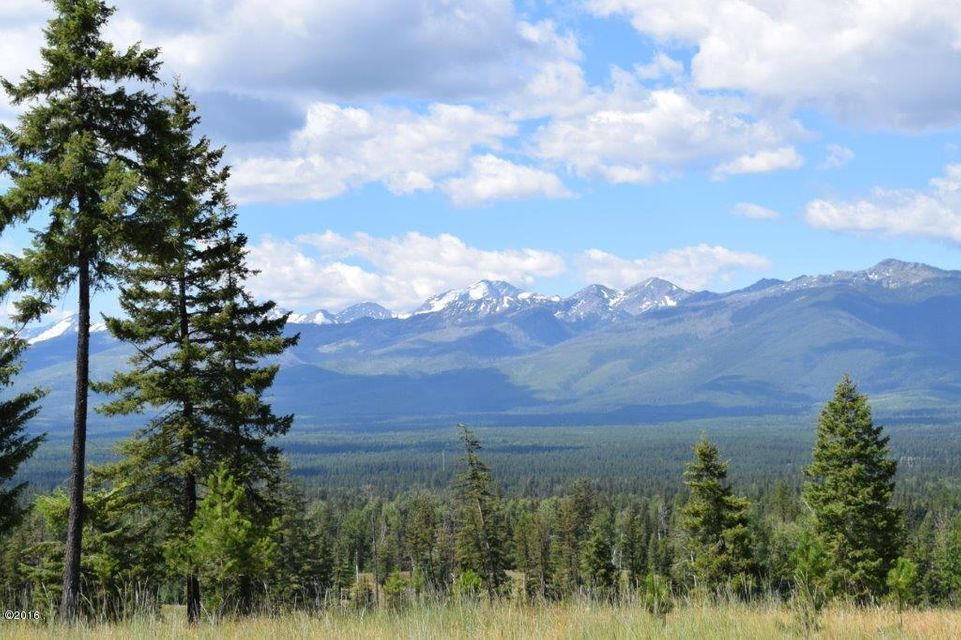 Land for Sale at Antler Ridge Road Swan Valley, Montana 59826 United States