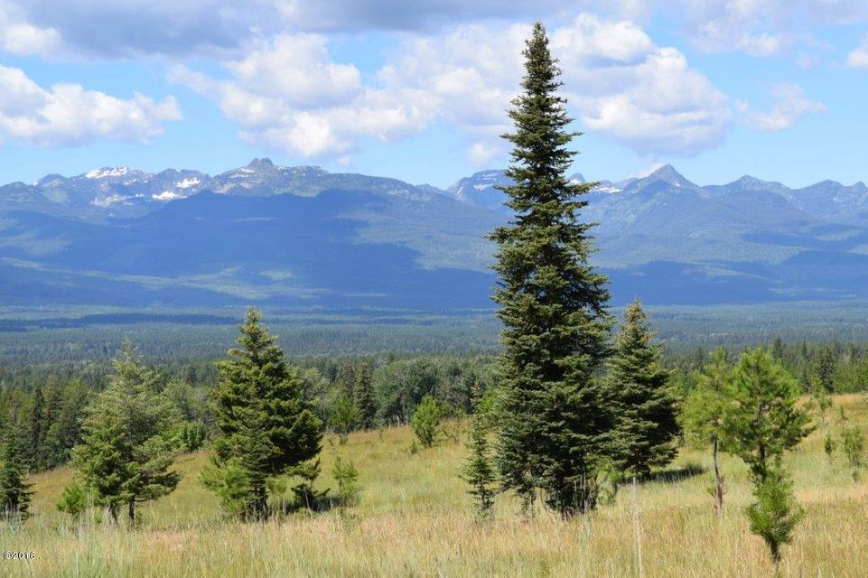 Additional photo for property listing at Antler Ridge Road  Swan Valley, Montana 59826 United States