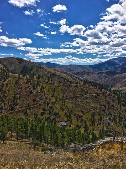 Additional photo for property listing at 116  Whiskey Gulch Road 116  Whiskey Gulch Road Conner, Montana,59827 Estados Unidos