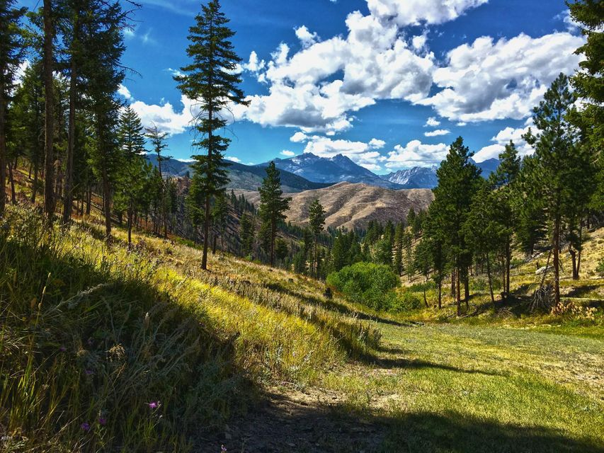 Additional photo for property listing at 116  Whiskey Gulch Road  Conner, Montana,59827 Estados Unidos