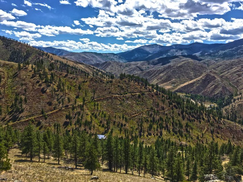 Additional photo for property listing at 116  Whiskey Gulch Road 116  Whiskey Gulch Road Conner, Montana,59827 Hoa Kỳ