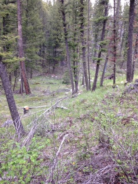 Additional photo for property listing at Lot #2 Kelly Subdivision  Philipsburg, Montana 59858 United States
