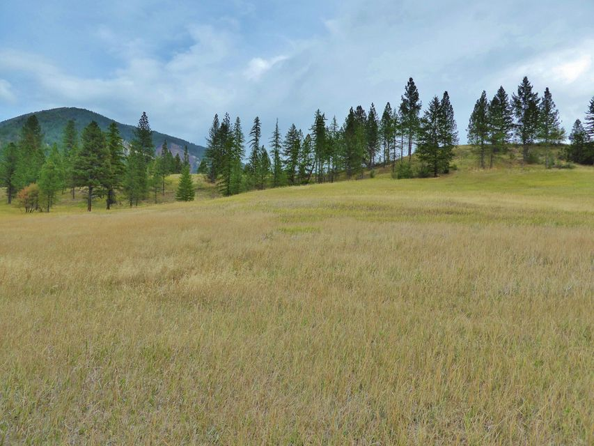 Additional photo for property listing at Sawmill Gulch Road  Alberton, Montana 59820 United States