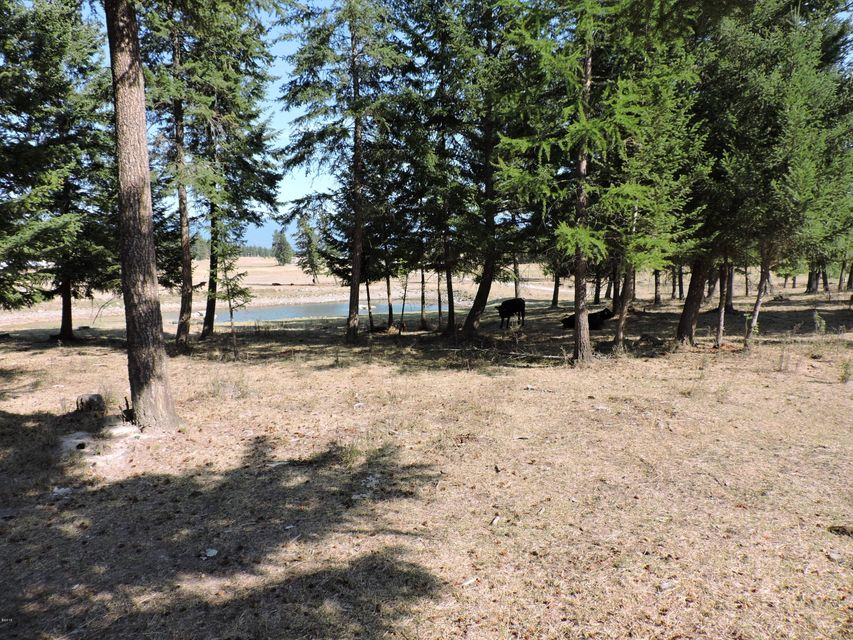 Land for Sale at 41124 Damorecy Drive Rollins, Montana 59931 United States