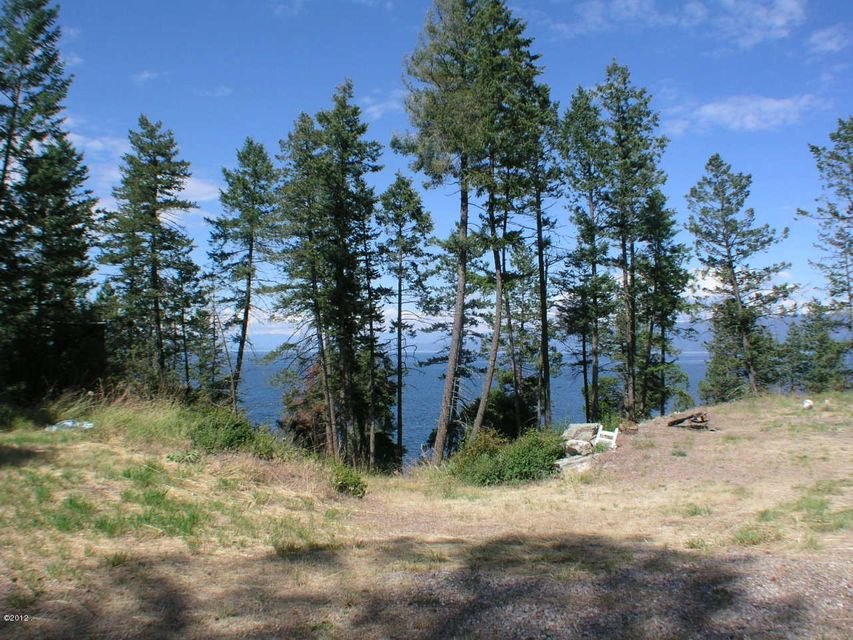 Additional photo for property listing at White Swan Road  Polson, Montana 59860 United States