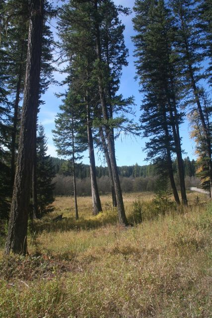Additional photo for property listing at 477 Lupfer Road  Whitefish, Montana 59937 United States