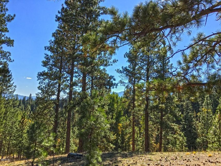 Additional photo for property listing at The Stage Stop Ranch 360  Fleet Street Hamilton, Montana,59840 Estados Unidos
