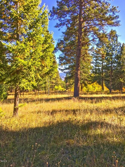 Additional photo for property listing at The Stage Stop Ranch 360  Fleet Street Hamilton, Montana,59840 États-Unis