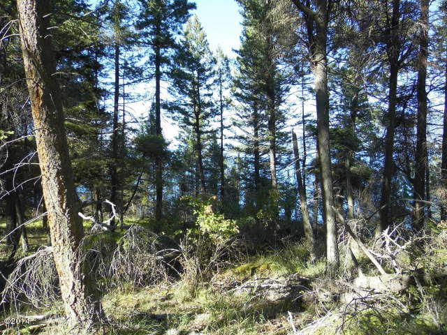 Additional photo for property listing at Westside Drive  Polson, Montana 59860 United States