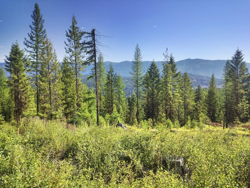 Montana real estate, Montana remote land