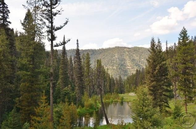 Land for Sale at 4 Mile Hughes Creek Road Darby, Montana 59829 United States