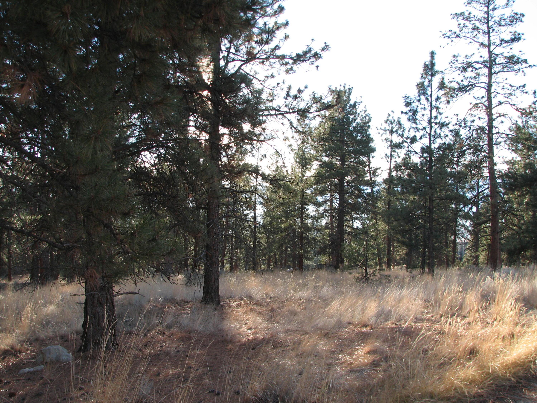 Land for Sale at Lot 82 Mascot Trail Hamilton, Montana 59840 United States