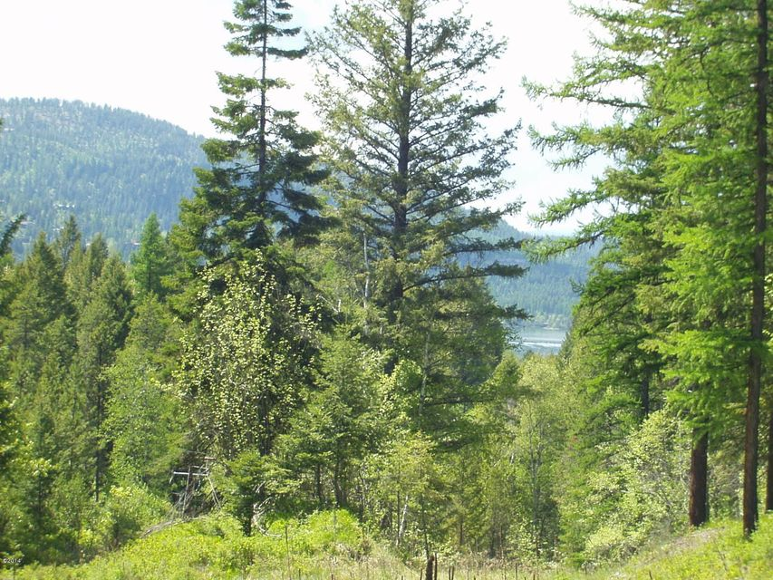 Additional photo for property listing at Resevoir Road Resevoir Road Whitefish, Montana 59937 United States