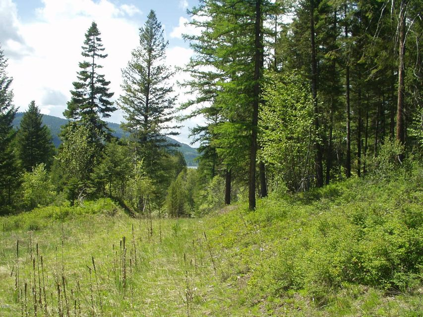 Additional photo for property listing at Resevoir Road  Whitefish, Montana 59937 United States