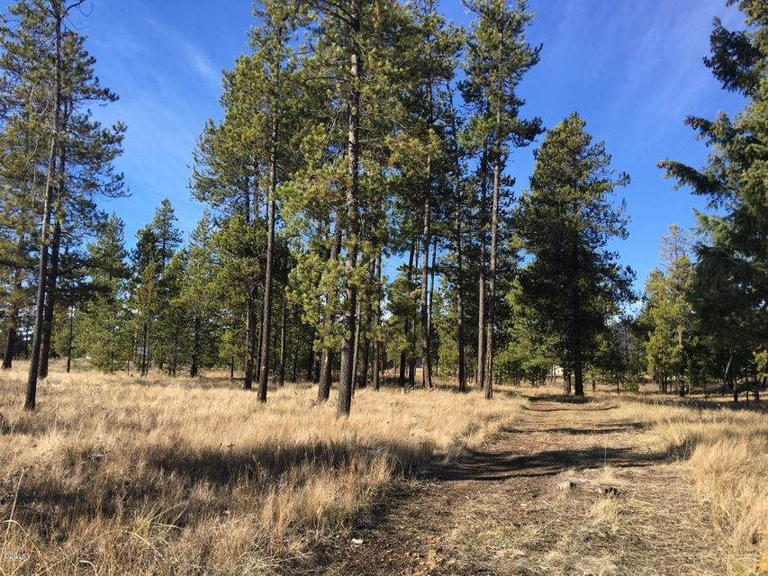 Additional photo for property listing at 8205 Highway 2 West  Marion, Montana 59925 United States