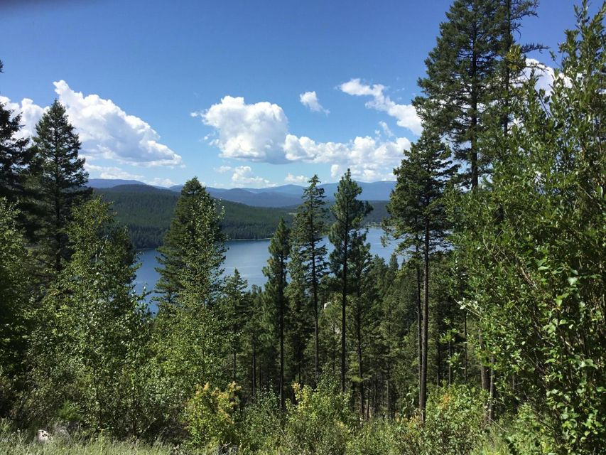 Additional photo for property listing at East Lakeshore Drive  Whitefish, Montana 59937 United States