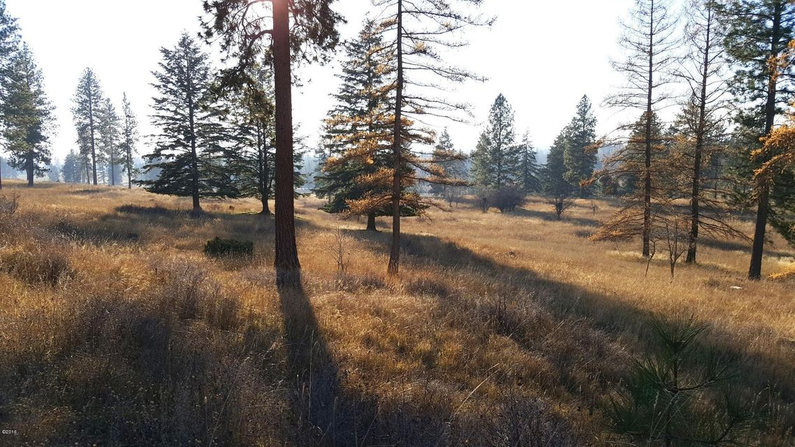 Additional photo for property listing at 41633 Canal Road  Ronan, Montana 59864 United States
