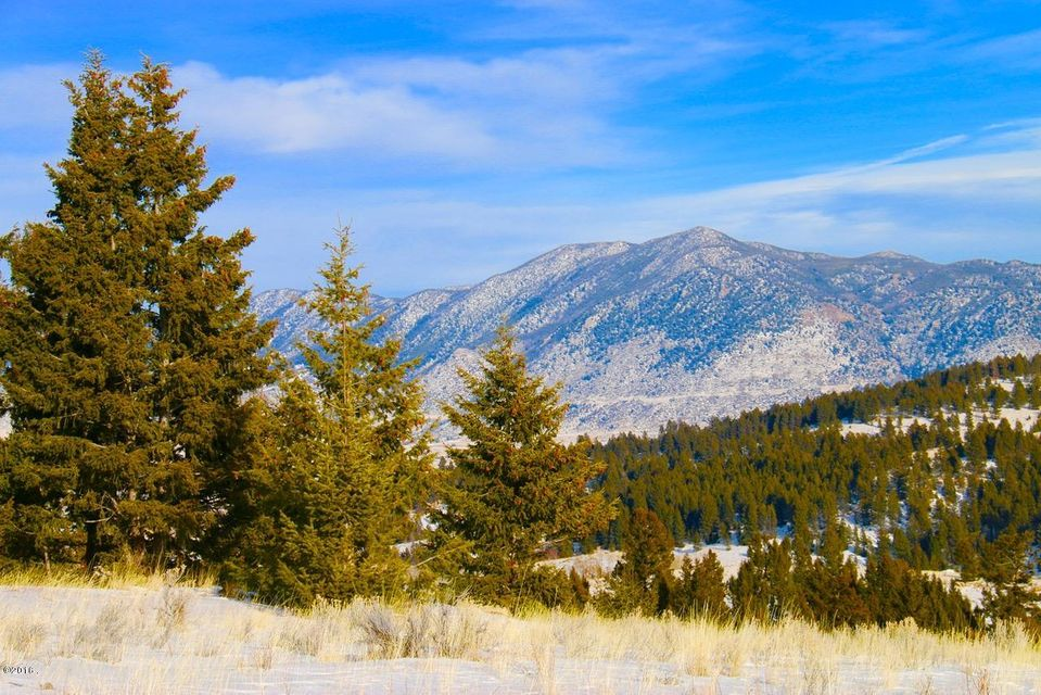 Additional photo for property listing at Basin Creek Road  Butte, Montana 59701 United States