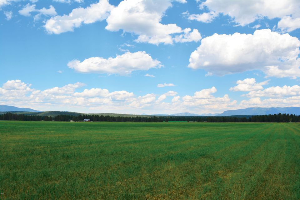 Land for Sale at 237 Kuhns Meadow Whitefish, Montana 59937 United States