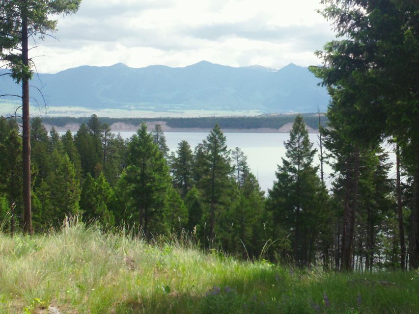 Stunning Lake Koocanusa Views ! Enjoy the West Kootenai In this incredible property ! Ready to build,septic approved and it borders Forest service and is just a short walk to Lake Koocanusa and Dodge Creek.Beautiful treed building site and power isn't far away.