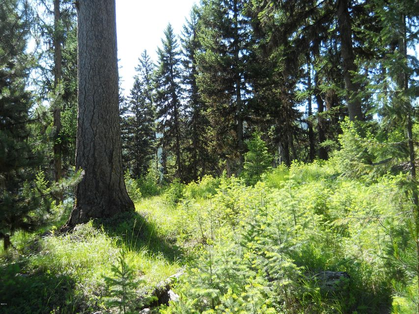 Additional photo for property listing at Lot 1 Island Lake Road  Libby, Montana 59923 United States