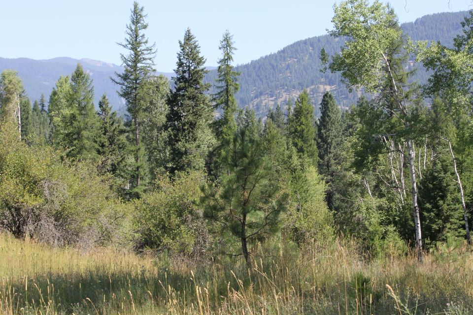 Additional photo for property listing at 25 Pearl Drive 25 Pearl Drive Trout Creek, Montana 59874 United States